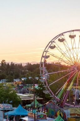 fair at dusk with ferris wheel and other rides and booths